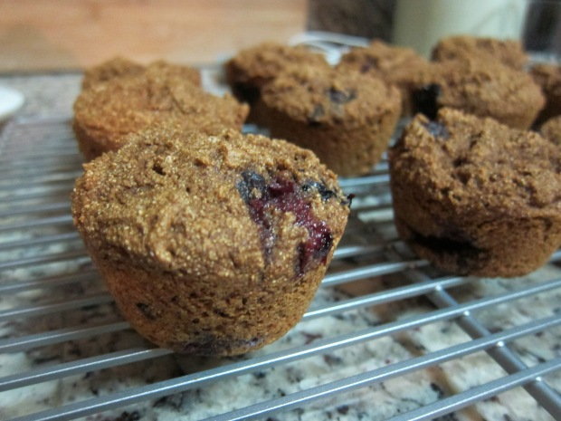 blueberry-lassy-muffins