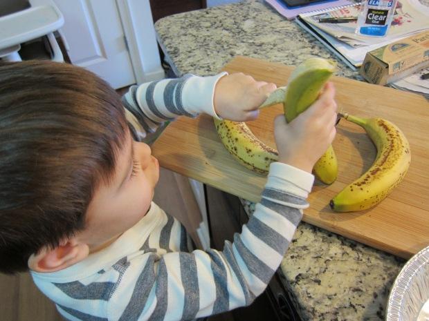 Banana Ice Cream (2)