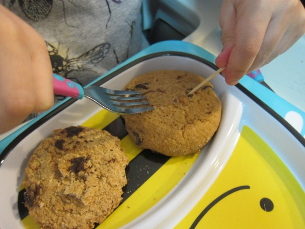 Chocolate Chip Dig (1)