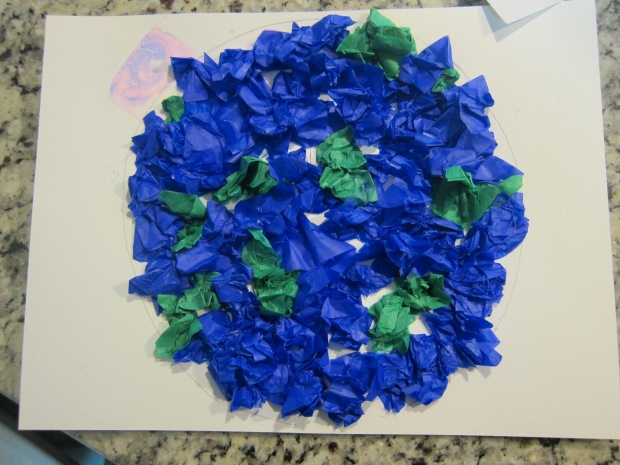 Tissue Globes (6)