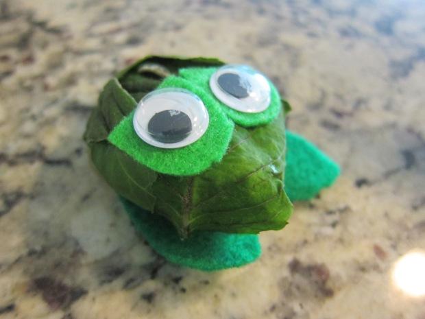 Frog Rock (6)