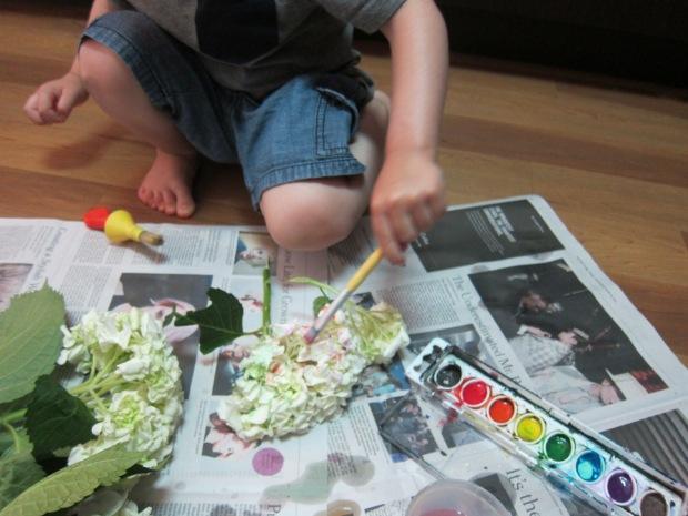 Painted Hydrangea (3)