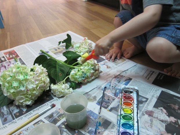 Painted Hydrangea (5)