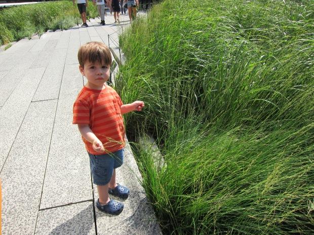 Highline (3)