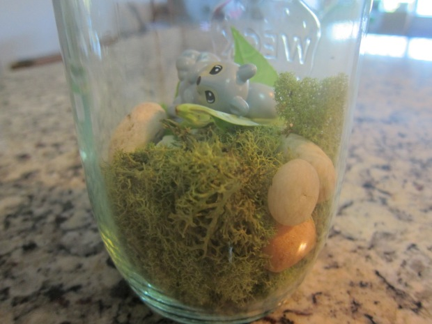 Mason Jar Terrarium (7)