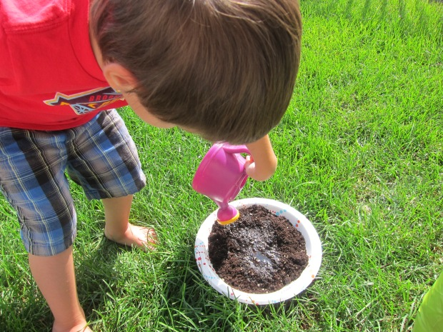 Mud Pies (2)
