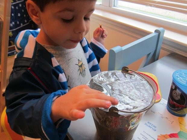 Bucket Drum (3)