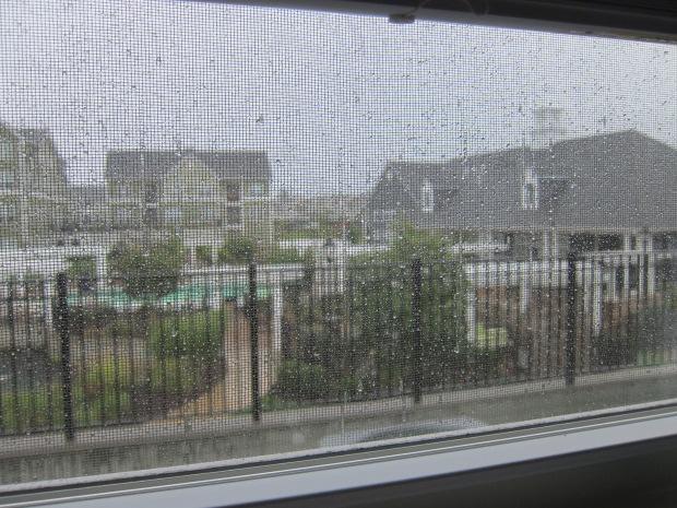 Rainy Picnic (1)