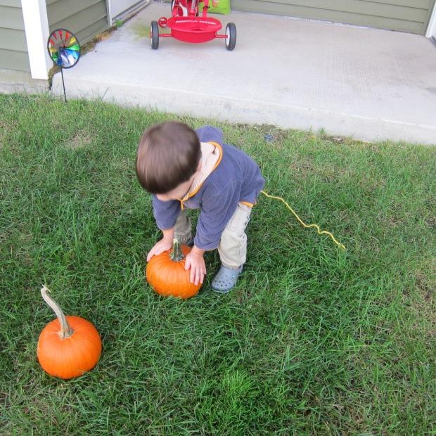 Pumpkin Leap (2)