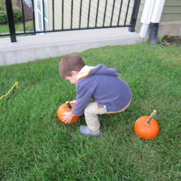 Pumpkin Leap (4)