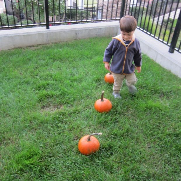 Pumpkin Leap (5)