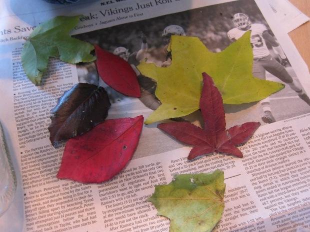 Leaf Votice (1)