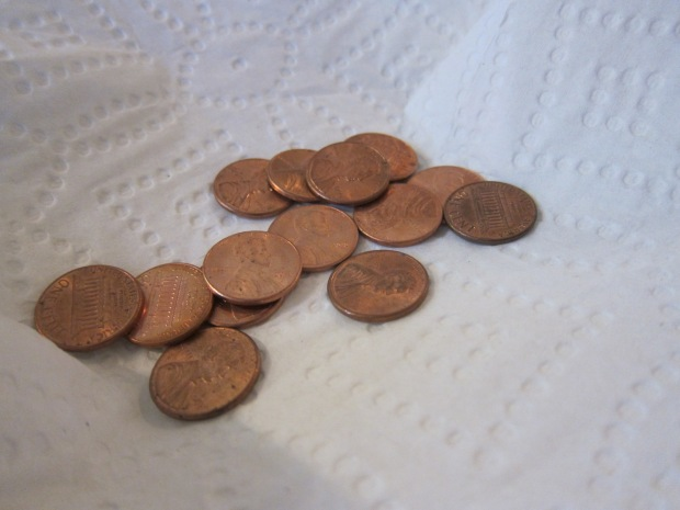 Pennies Green (2)