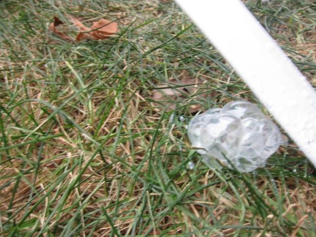 Frozen Bubbles (5)