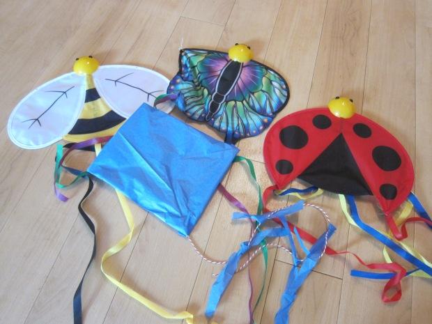 Kite Fest (5)