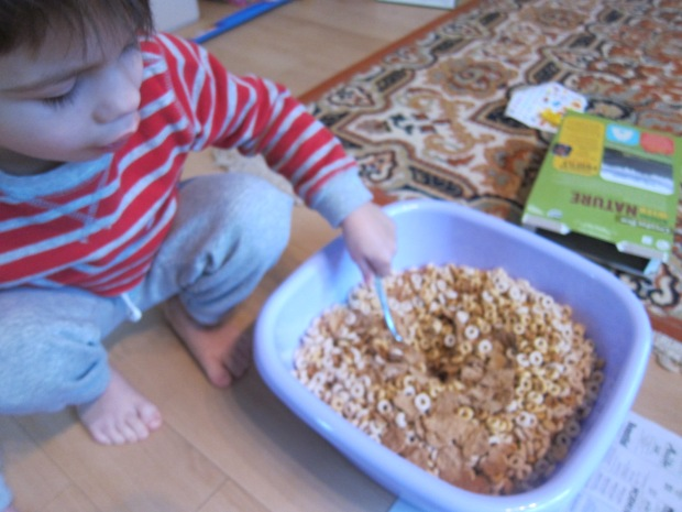 Magnetic Cereal (4)