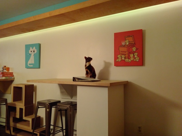 Meow Parlor (7)