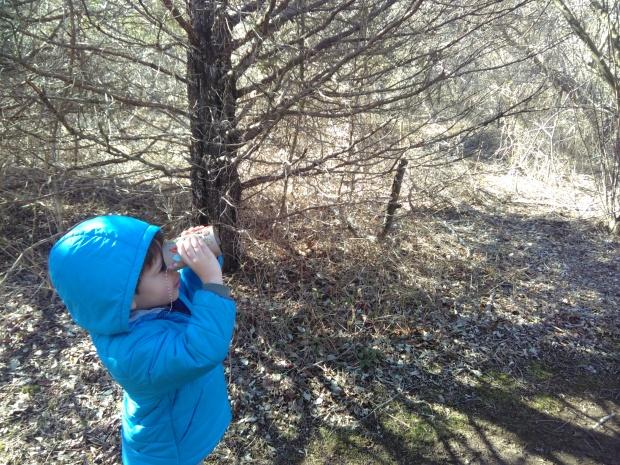 Binoculars (10)