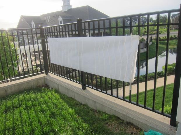 Paint on Fence (2)