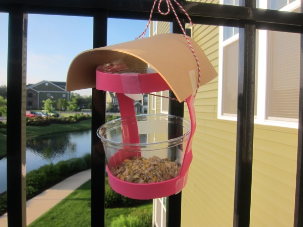 Bird Cafe (7)