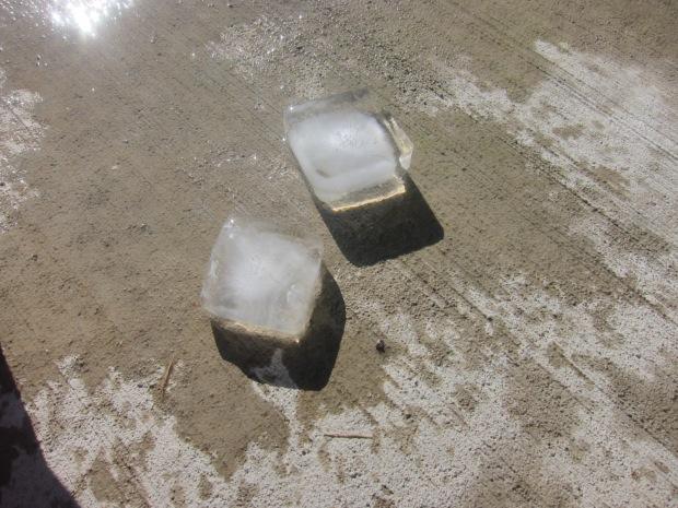 Ice Boat (6)
