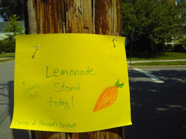Lemonade Stand (6)