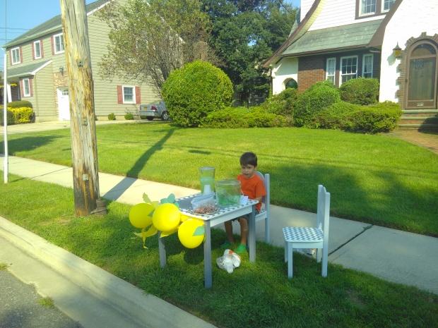 Lemonade Stand (7)