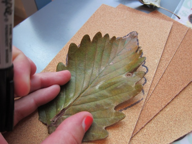 Sandpaper Leaves (1)