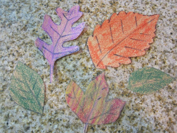 Sandpaper Leaves (7).JPG