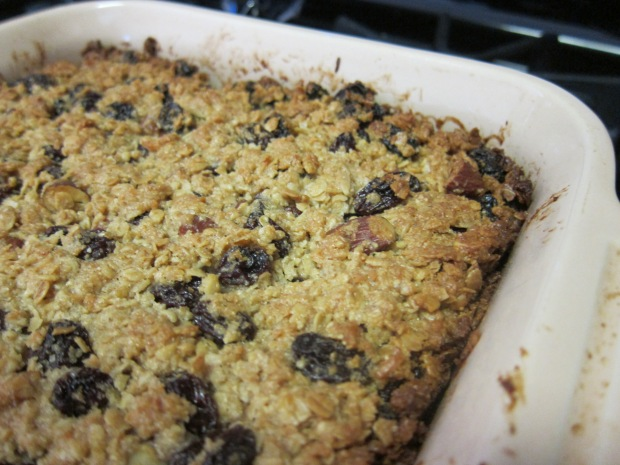 Kid Granola Bars (3)