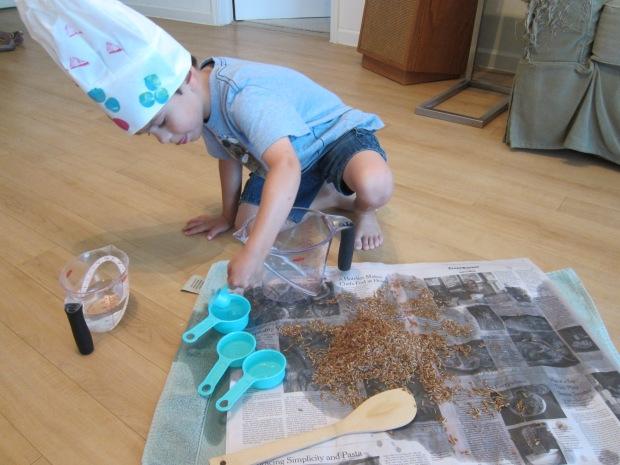 Koala Baking (13)