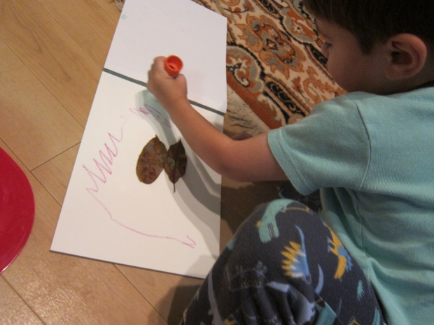 Leaf Drawings (3)