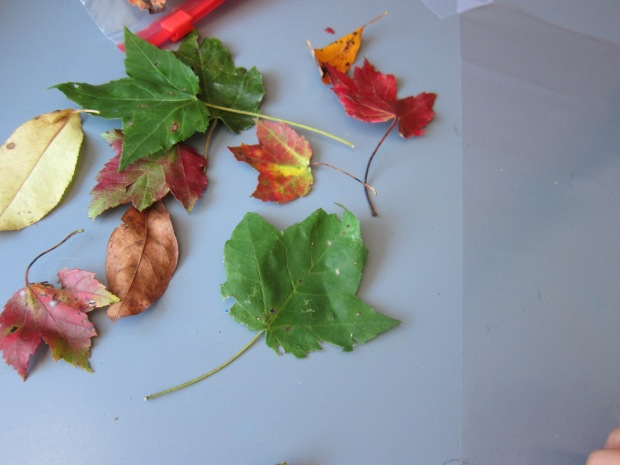 Fall Placemat (2)