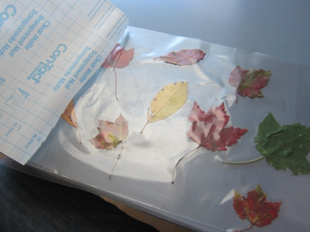 Fall Placemat (4)