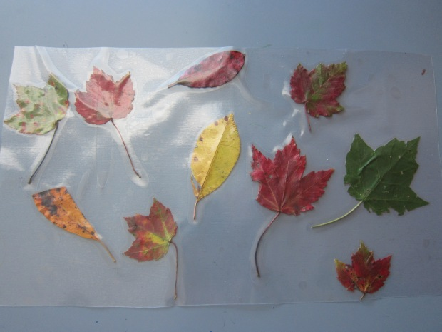 Fall Placemat (5).JPG