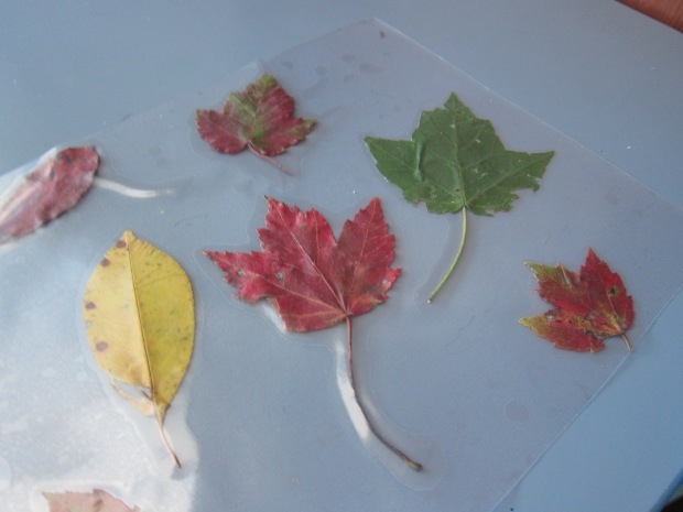 Fall Placemat (6)