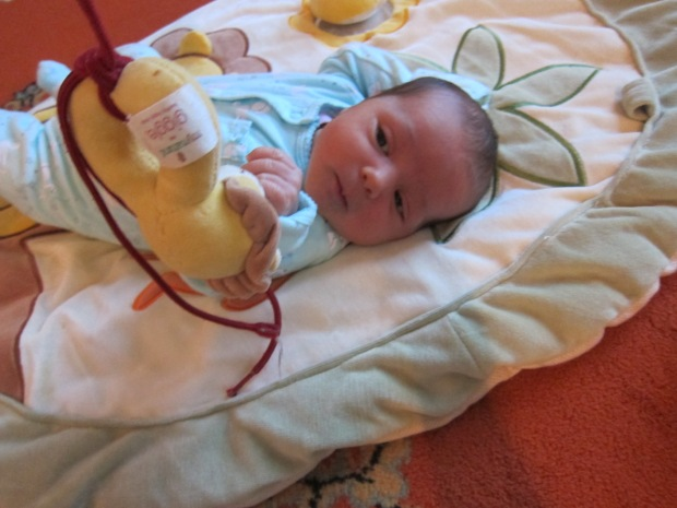 Baby Watch b (2).JPG