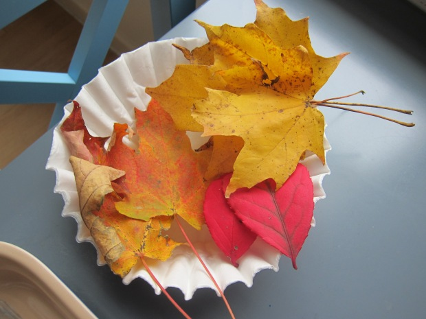 Leaf Chroma (1)