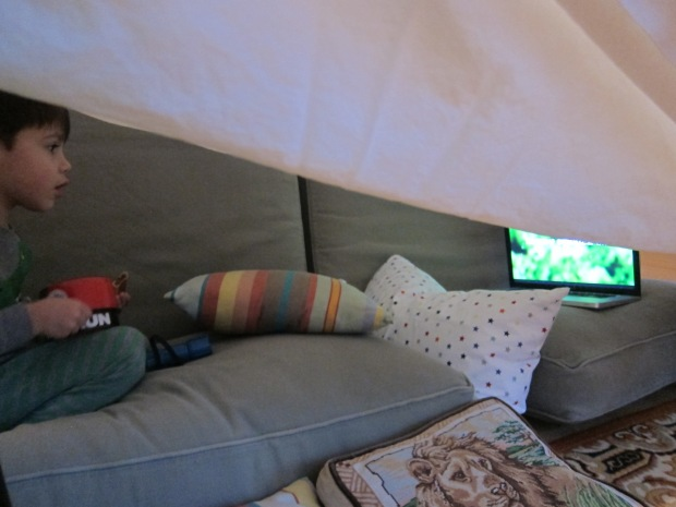 Movie Fort (4)
