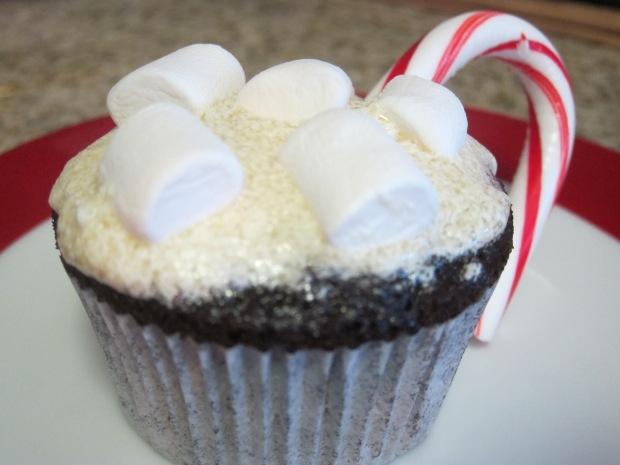 cocoa cupcakes (10)