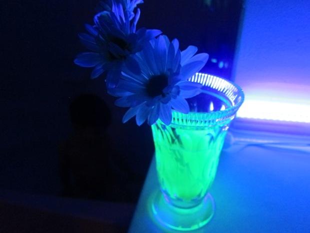 glow flower (7)