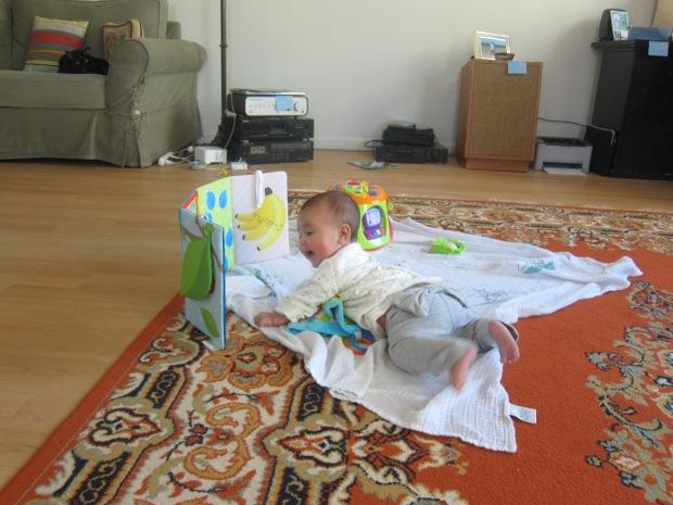 Baby's View (10).JPG
