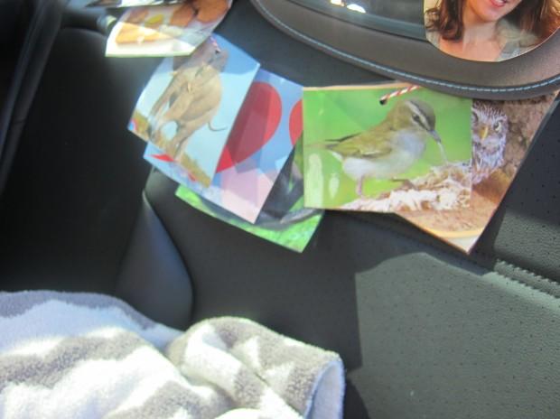 Car Ride (8).JPG