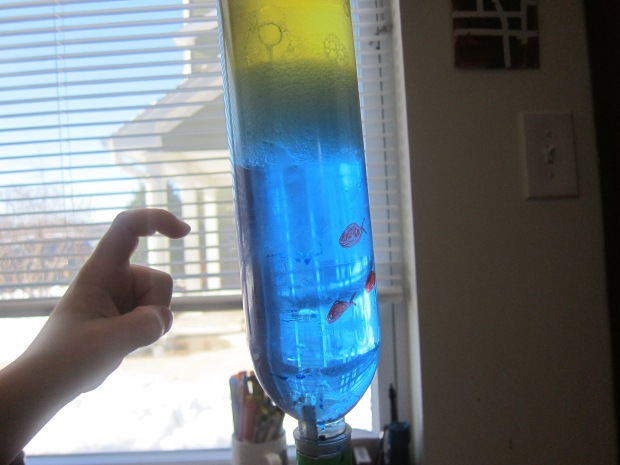 Liquid Hourglass (12)