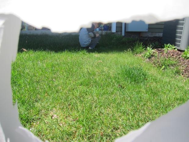 Backyard Fort (5)