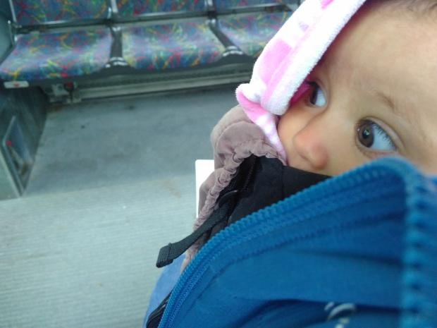 Wheels on Bus (8)