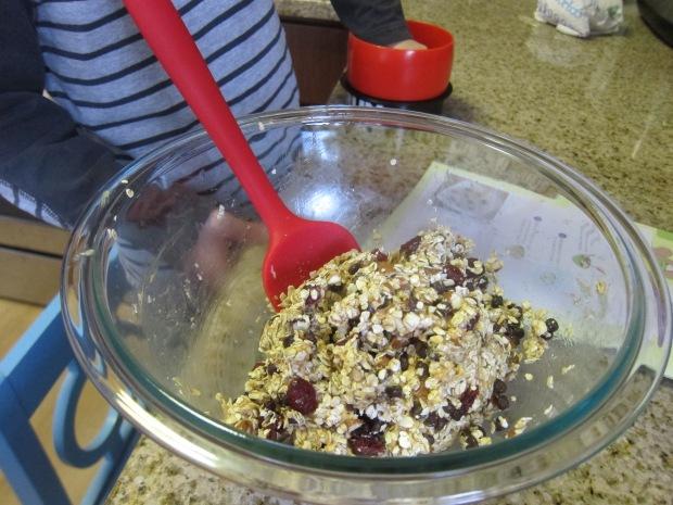 Oatmeal Energy (3)