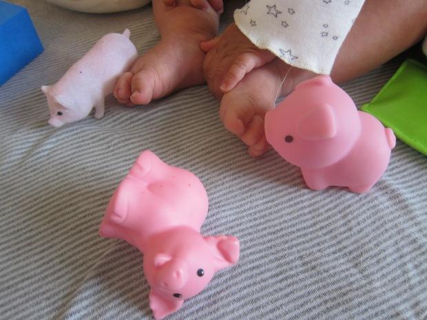 Piggy Toes (5)