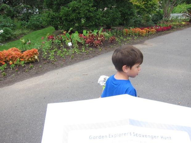 Garden Games (1)