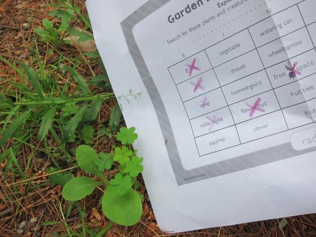 Garden Games (5)